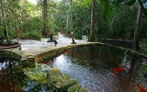 Amazon eco Park resort amazonie
