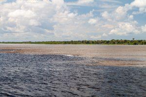 Amazon River Rio Negro Cruise