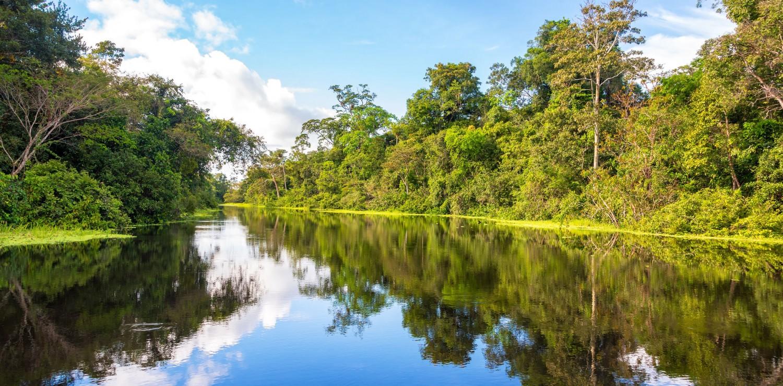 CroisièŠre Amazonie
